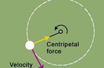 Calculate Centripetal Force.