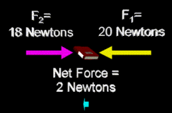 Calculate Net Force.
