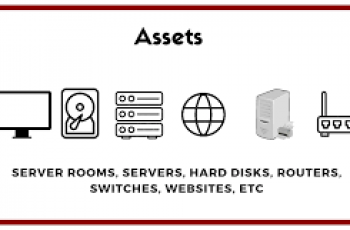 Calculate Total Assets.