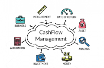 Calculate Net Cash Flow.