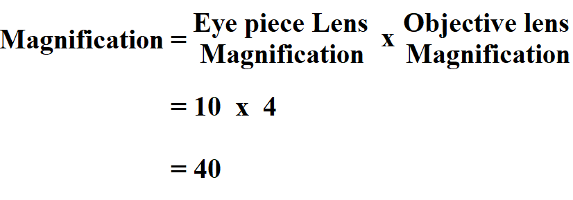 Calculate Total Magnification.