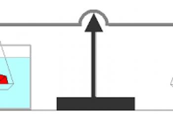 Calculate Specific Gravity.