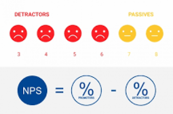 How to Calculate NPS.