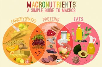 Calculate your Macros.