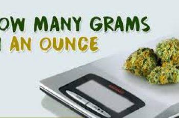 Convert Grams to Ounces.
